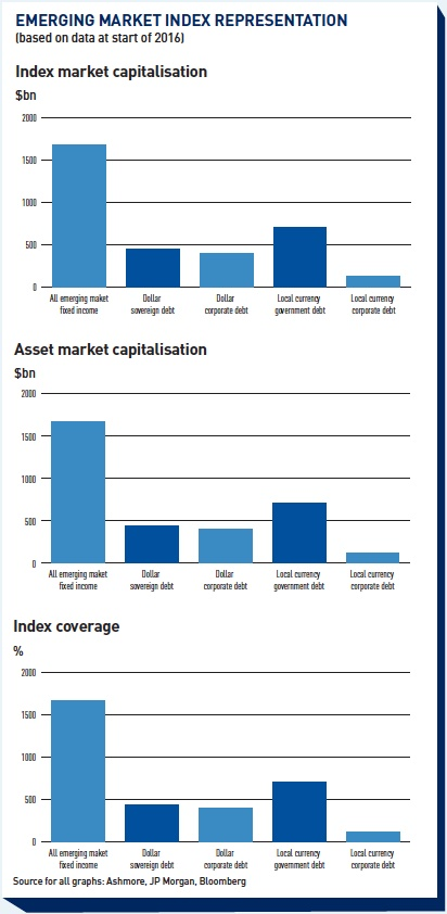 emerging market index representation