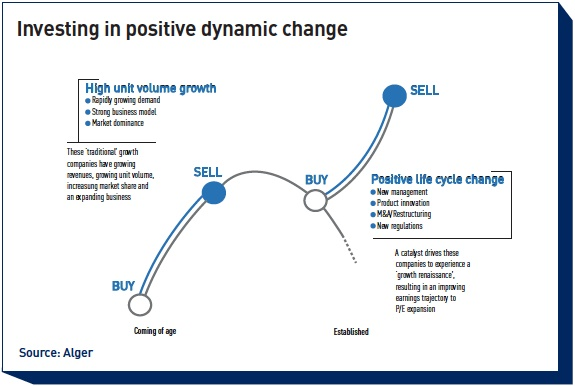 investing in positive dynamic change