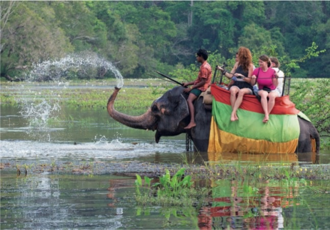 tourism accounts for a large part of sri lankas economy