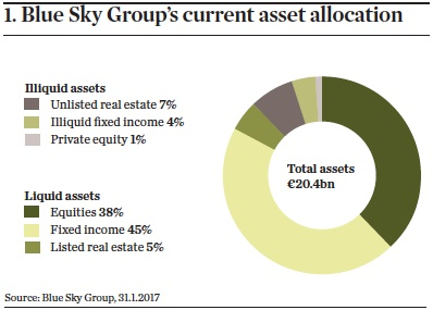 blue sky groups current asset allocation